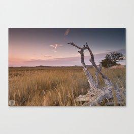 Newtown Sunset Canvas Print