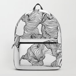 Reticulated Backpack