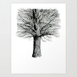 Broadview Art Print