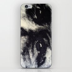 The Quest iPhone & iPod Skin