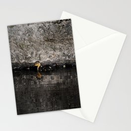 The little anatinae Stationery Cards