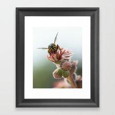 A Natural Buzz Framed Art Print