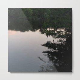 Alligator Lake Metal Print