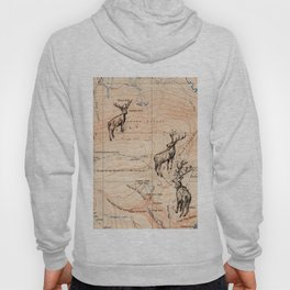 Stags walking the map Hoody