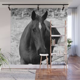 Awesome B&W Horse Wall Mural