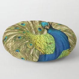 Peacock Floor Pillow