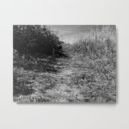 Lost II Metal Print