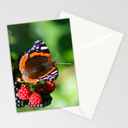 Butterfly on wild blackerries Stationery Cards