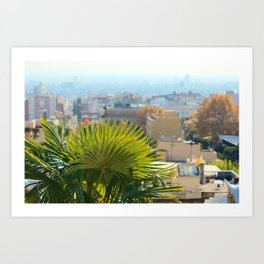 Barcelona Palms Art Print