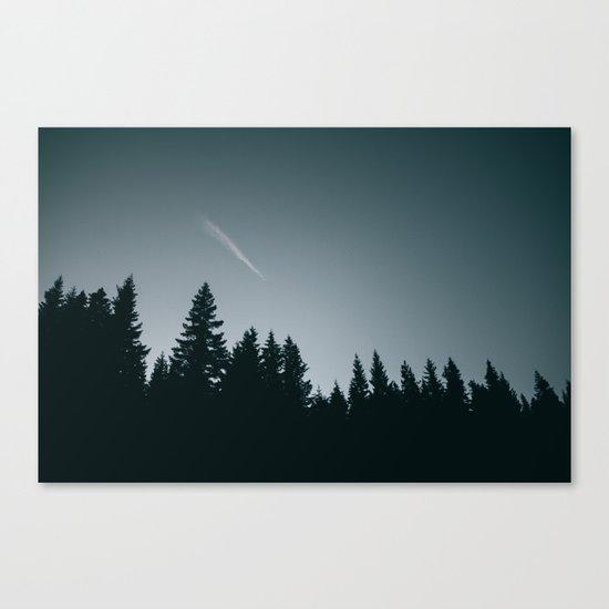 Forest XVI Canvas Print