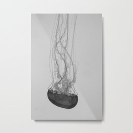Jellyfish Basics no. 1 Metal Print