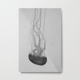 Jellyfish Basics no. 1 Metal Print
