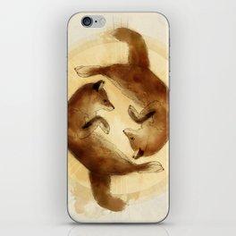 Continuum iPhone Skin
