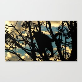 Shadow Cat and Bird Canvas Print