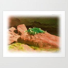 Datura Cavern Art Print