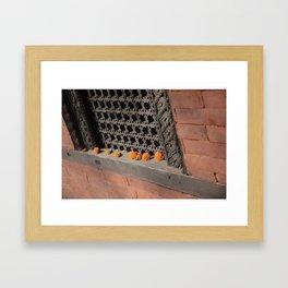 Marigold India Framed Art Print