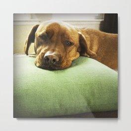 Green Pillow Metal Print