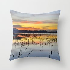 Lonely tree at the lake Throw Pillow