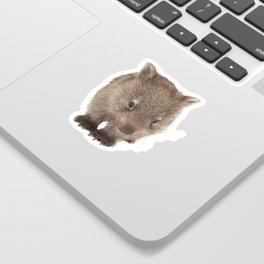 An adorable Australian wombat Sticker