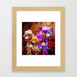 Yellow & Violet Purple Fantasy Iris  Painting Framed Art Print
