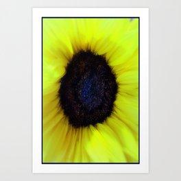 Flower Beauty Art Print