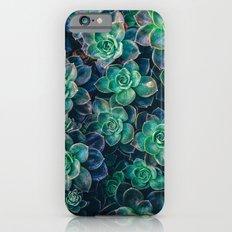 Succulent Gardens iPhone 6 Slim Case