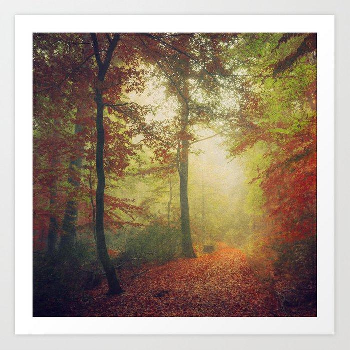Fall Forest Mood Art Print