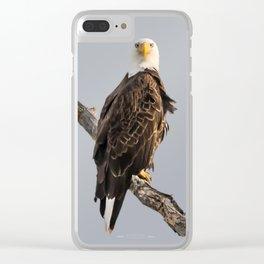 April Eagle Clear iPhone Case