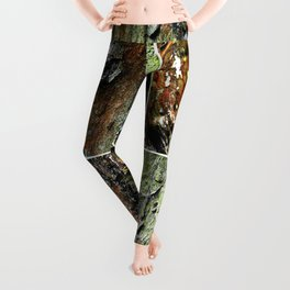 Tableau of Archetypal Structures Leggings