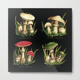 Mushroom illustration Metal Print