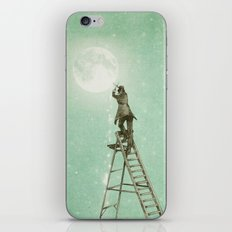 Waning Moon iPhone Skin