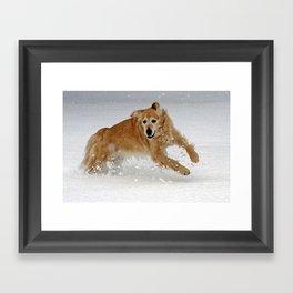 Leaping Framed Art Print