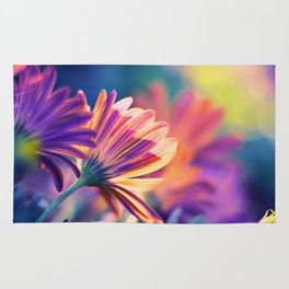 Colorful Days Rug