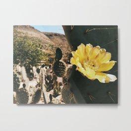 The Desert is in my Blood - Níjar Metal Print