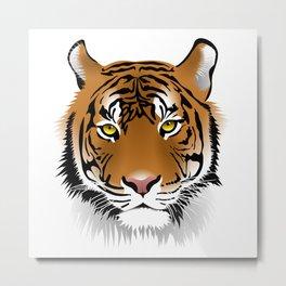 Close up beautiful Samatran tiger Metal Print