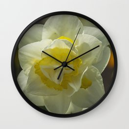 Daffodil sunshine Wall Clock