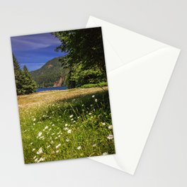 Field of Daisies and Lake Crescent Stationery Cards