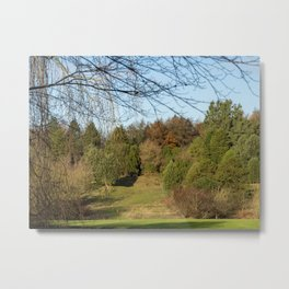 Autumn in the Arboretum Metal Print