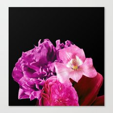 The Reds The Purples Canvas Print