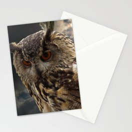 Stunning Owl Photography Stationery Cards