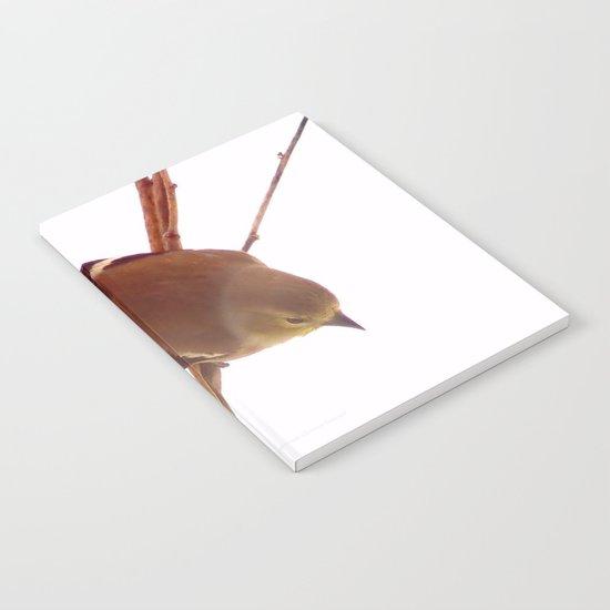 American Goldfinch Notebook