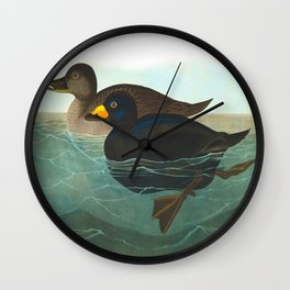 American Scoter Duck Audubon Birds Vintage Scientific Hand Drawn Illustration Wall Clock
