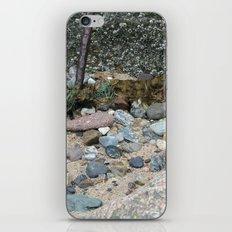 Barnicles iPhone & iPod Skin