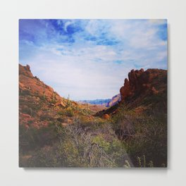 The Arizona Desert  Metal Print
