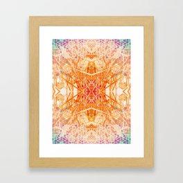 Colored Garden Framed Art Print