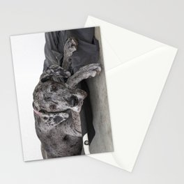 Great Dane waiting Stationery Cards
