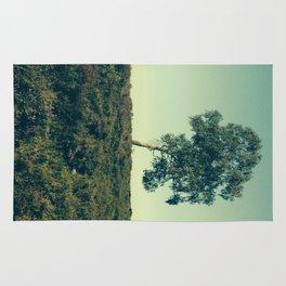 Lonely Tree, Hoge Veluwe National Park Rug