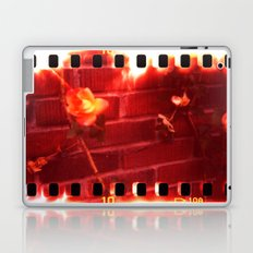 holga film x-processed, roses with brick Laptop & iPad Skin
