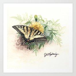 Swallowtail Study Art Print