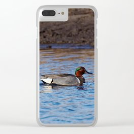 Green-winged Teal Drake Clear iPhone Case